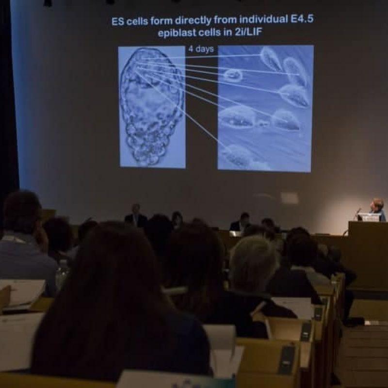 foto evento ibsa foundation Terapia con cellule staminali.